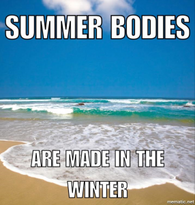 summerbodiessq